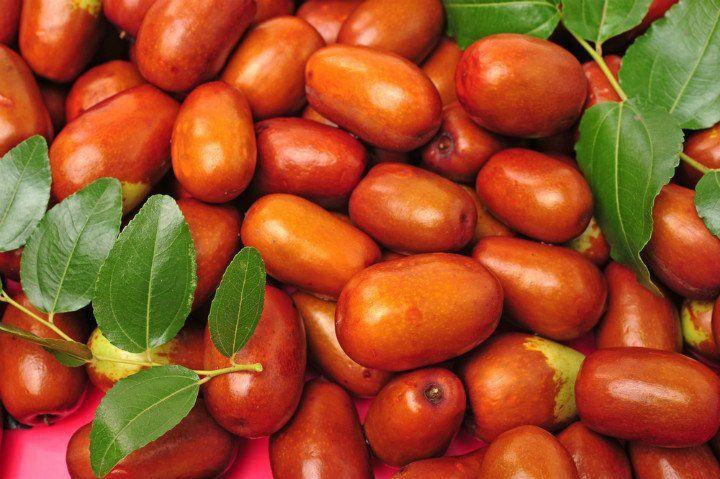 Hünnap Meyvesi Nedir? / Hünnap Meyvesinin Faydaları Nelerdir?