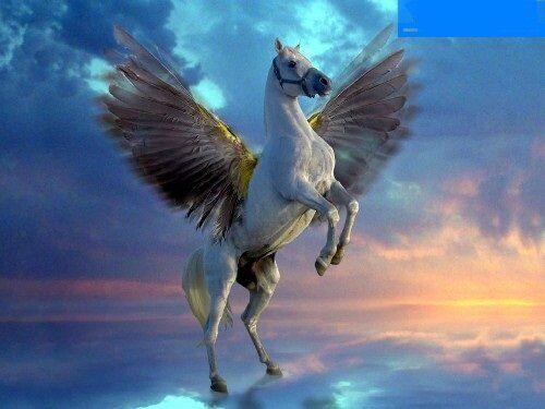 Rüyada Uçan At Görmek Ne Anlama Gelir?