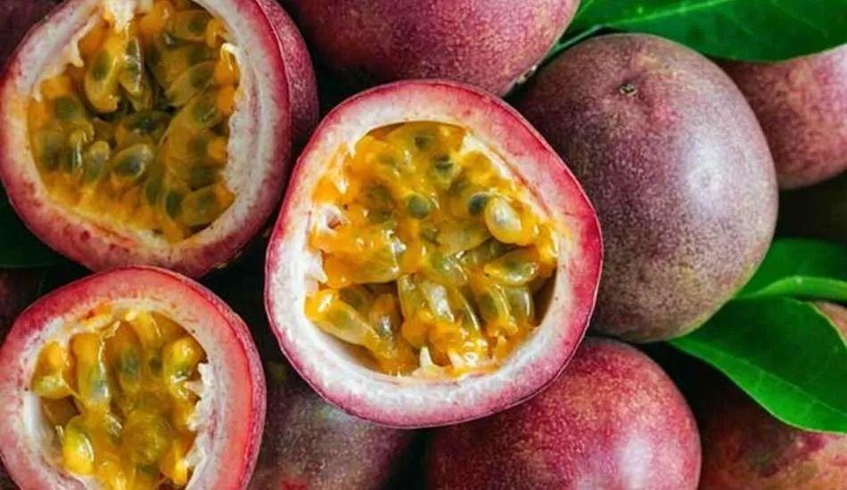Çarkıfelek meyvesi nedir