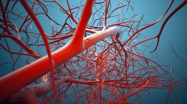 Hemoglobinopati Taşıyıcılığı Teşhisi Nasıl Yapılır?