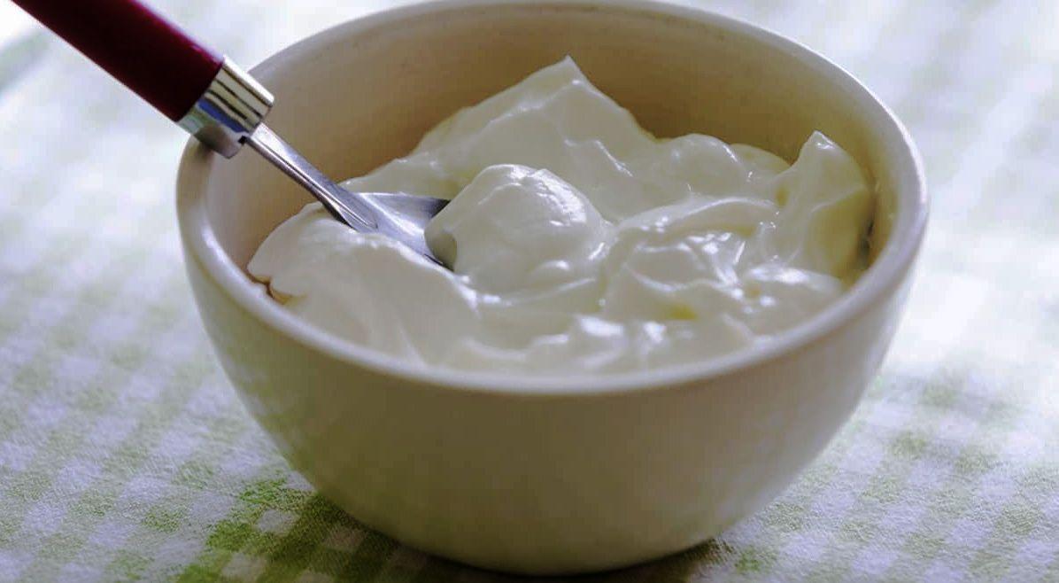Bir Kâse Yoğurt Kaç Kalori Yakar, Yoğurt Kilo Verdirir Mi? Tam Yağlı Yoğurt Nasıl Yapılır?