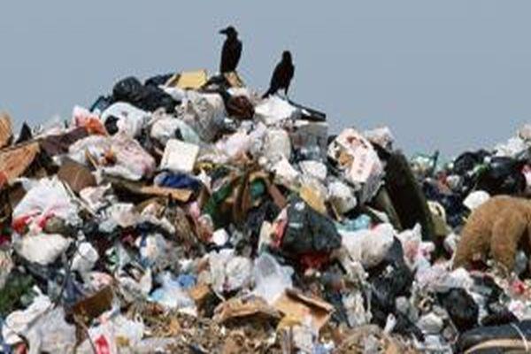 Çöpten 2,5 milyar lira çıktı