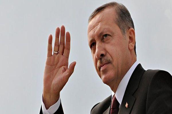 Başbakan Erdoğan'a 5 ülkeden destek