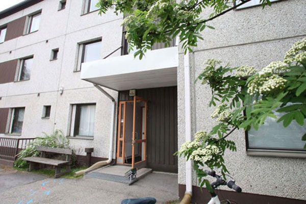 Finlandiya'da 5 bebek cesedi bulundu