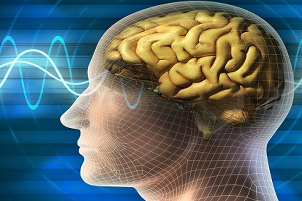 Beynin en iyi çalıştığı yaş belirlendi