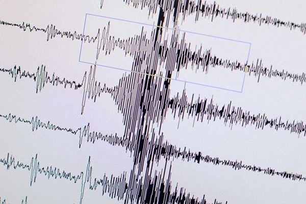 Depremin şiddeti devletten sorulacak