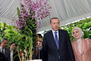 Erdoğan ve eşi Emine Erdoğan'ın isimleri bir orkideye verildi