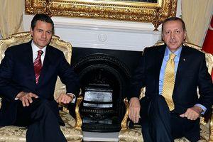 Erdoğan, Meksika Cumhurbaşkanı ile görüştü