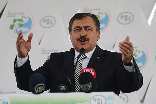 Eroğlu, 'Operasyonlar yabancı güçlerin eseridir'