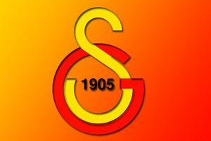 'Galatasaray Berbatov'u istiyor'