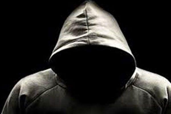 BBC yazarından Türk hackerlara övgü