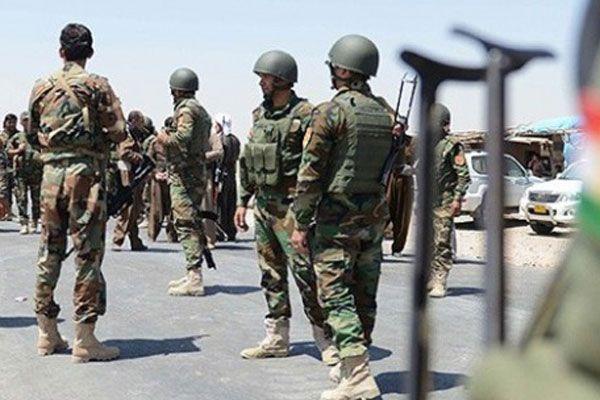 Hollanda'dan Kürtler'e askeri destek