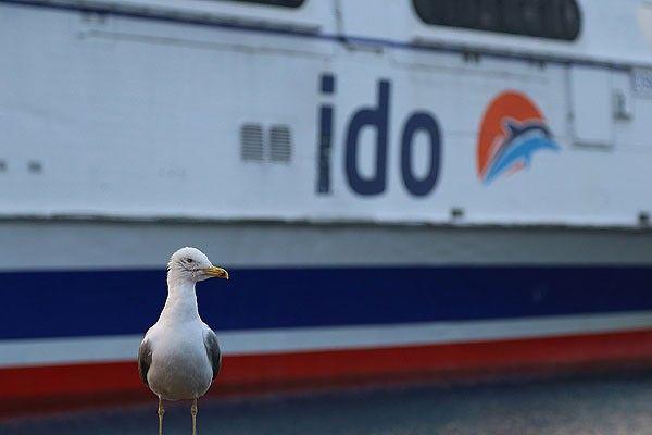 İDO'dan deniz seferi iptali