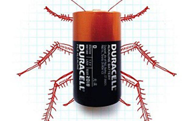 Japonlar hamam böceği yaptı