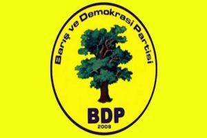 Karayılan BDP'den aday oldu