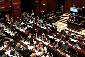 Mısır'da yeni anayasa referandumu 14-15 Ocak'ta