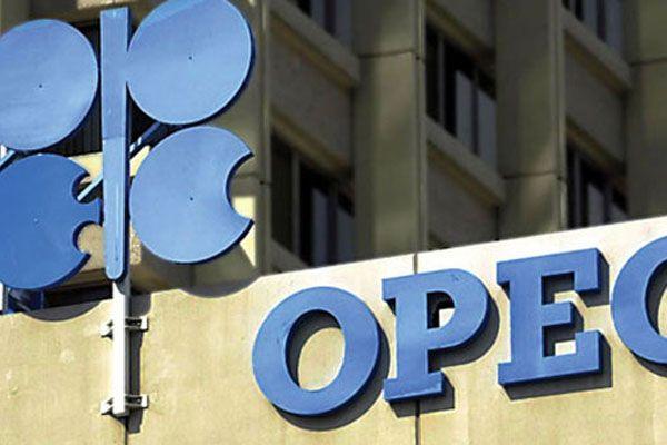 OPEC, 'Petrol arzında sorun görünmüyor'
