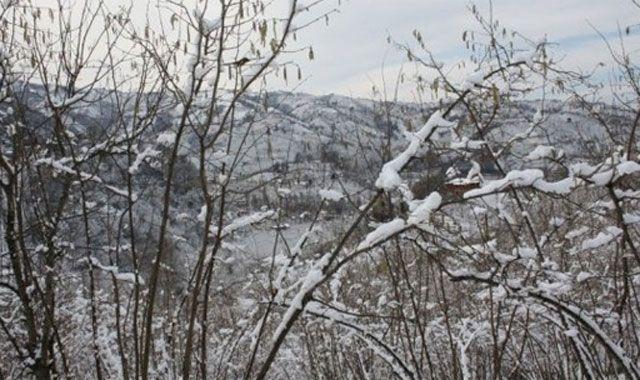 Kar yağışı fındık üreticisini korkuttu