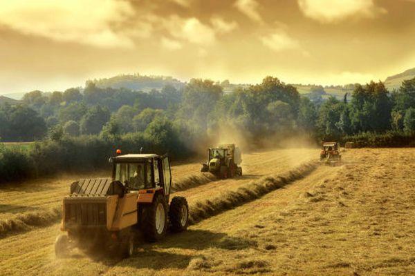 Tarım Bakanı Mehdi Eker'den çiftçiye müjde