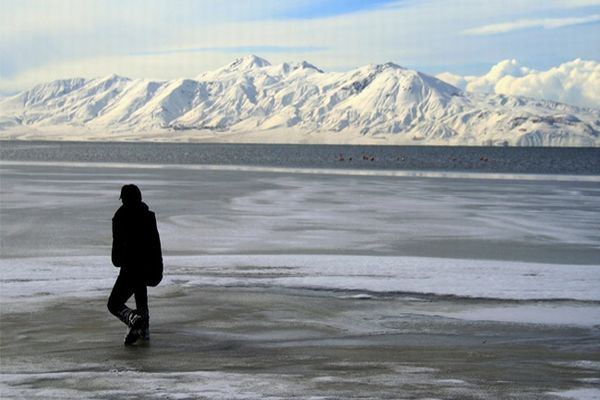 'Van Gölü' dondu