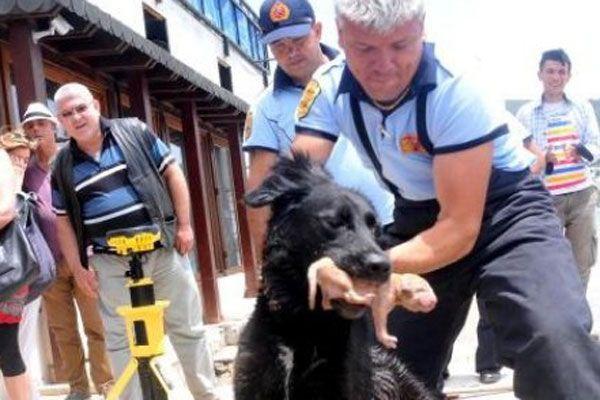 Yavrularını itfaiyenin yardımıyla boğulmaktan kurtardı
