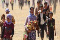 Birleşmiş Milletler, Irak'ta acil durum ilan etti
