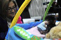 Terk edilen yavru babuna 'küçük prens' adı verildi