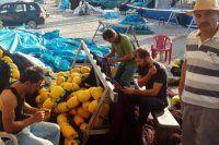 Balıkçılardan bol ve ucuz balık müjdesi