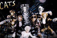 Cats Müzikali ilk kez Türkiye'de