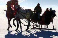 Ardahan'da buz tutan gölde atlı kızak keyfi