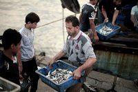 Gazze'den Batı Şeria'ya deniz ürünleri girişine izin verildi