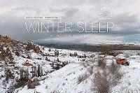 Kış Uykusu Fransa'da vizyona girecek
