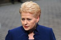 Litvanya Cumhurbaşkanı'ndan Türkiye'ye övgü