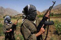 PKK'lılar 2 kardeşi kaçırdı
