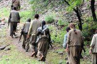 Şırnak'ta 8 terörist daha teslim oldu