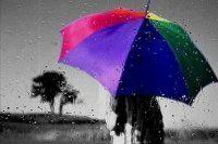 Bugün hava nasıl olacak? Şemsiyenizi almadan dışarı çıkmayın