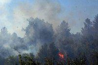 4 hektar ormanlık alan ve tarım arazisi kül oldu