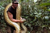 'Kendimi yılana yedirdim' dedi, yalan çıktı