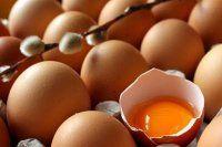 Artık yumurta saman içinde satılamayacak