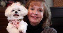 3.5 milyon liralık servetini köpeğine bıraktı