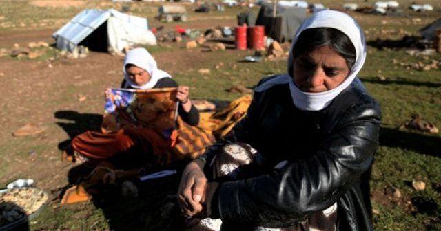 Binlerce kişi Musul operasyonundan kaçıyor