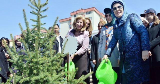 Emine Erdoğan 'Bereket Ormanları' projesini başlattı