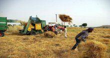 Çiftçiye, bu yıl verilecek tarımsal destekler belirlendi