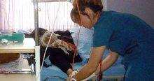 Türkiye'de yılda 159 bin kişi kansere yakalanıyor