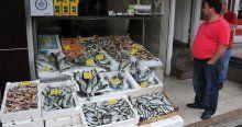 Balık fiyatları tavan yaptı