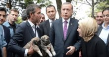Cumhurbaşkanı Erdoğan'la vatandaşların neşeli sohbeti