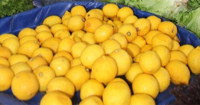 5 kilo karpuz fiyatına 1 limon