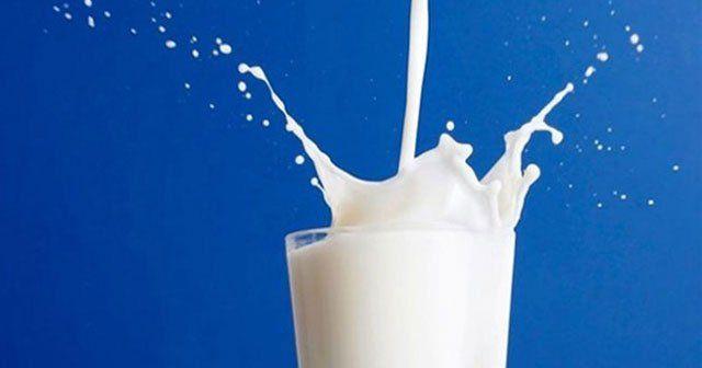 Toplanan süt miktarı Haziran'da arttı