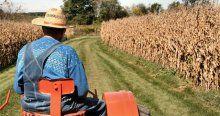 Bakanlık'tan çiftçiye müjdeli haber