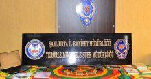 Şanlıurfa'da terör operasyonu, 13 gözaltı